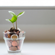Financing a Green and Inclusive Recovery