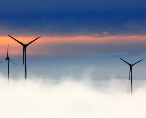 Carbon Offsets and Credits Explained