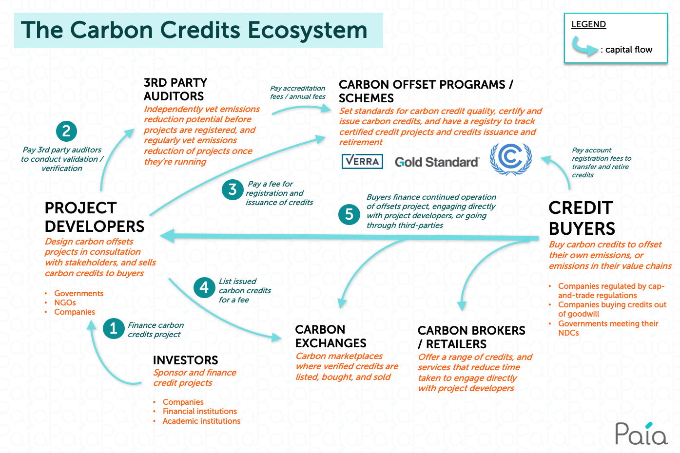 The Carbon Credits Ecosystem infographic